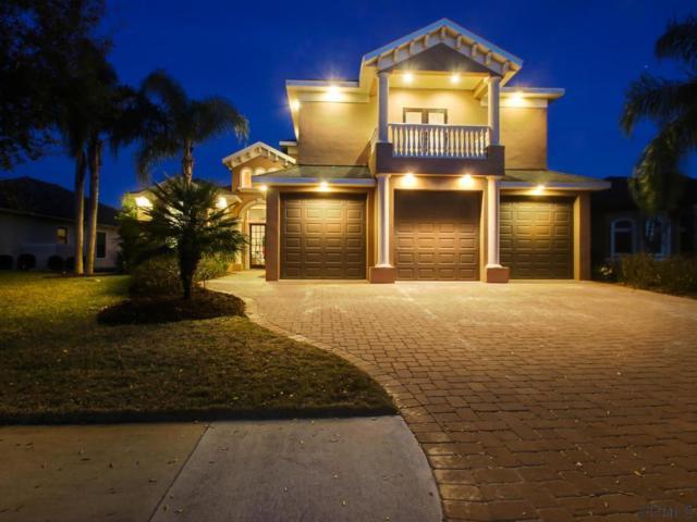 71 Heron Dr, Palm Coast, FL 32137 (MLS #245501) :: RE/MAX Select Professionals