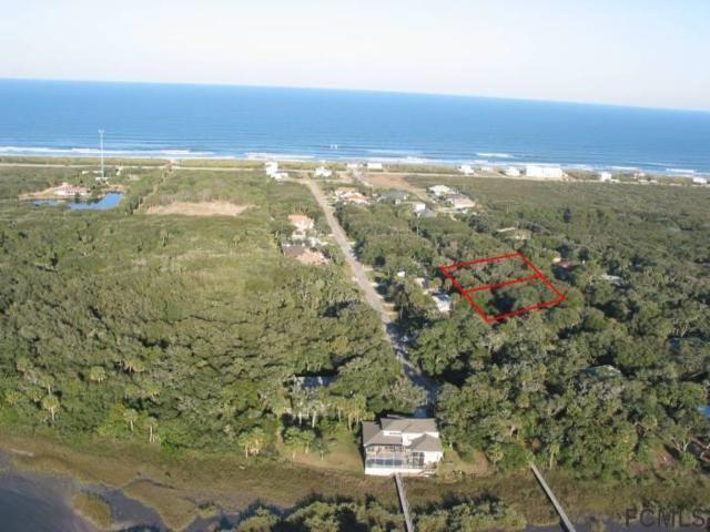 25 Beachside Dr, Palm Coast, FL 32137 (MLS #245588) :: RE/MAX Select Professionals
