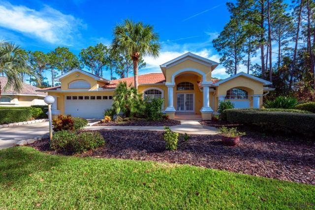 53 Woodhollow Lane, Palm Coast, FL 32164 (MLS #245610) :: RE/MAX Select Professionals
