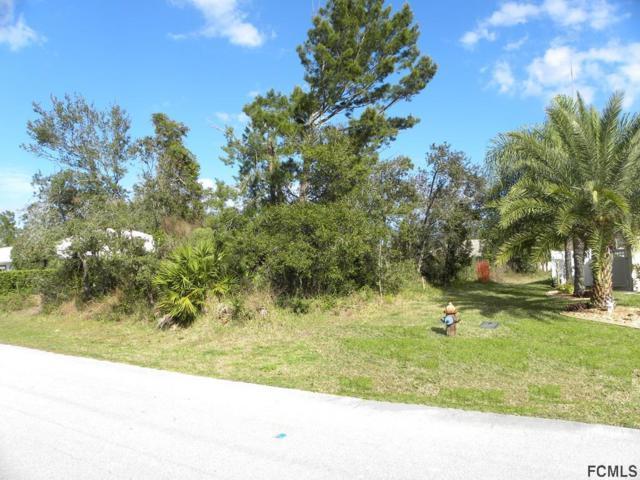 3 Fairmont Lane, Palm Coast, FL 32137 (MLS #245618) :: RE/MAX Select Professionals