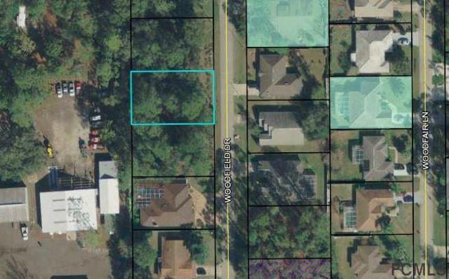 47 Woodfield Drive, Palm Coast, FL 32164 (MLS #245636) :: RE/MAX Select Professionals