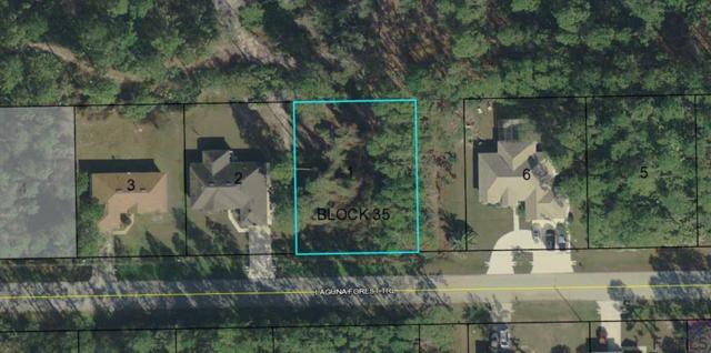 31 Laguna Forest Trl, Palm Coast, FL 32164 (MLS #245698) :: RE/MAX Select Professionals