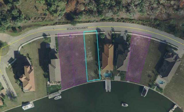 332 Harbor Village Pt, Palm Coast, FL 32137 (MLS #245954) :: Memory Hopkins Real Estate