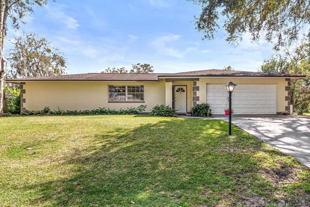 4 Fern Court, Palm Coast, FL 32137 (MLS #246563) :: Memory Hopkins Real Estate