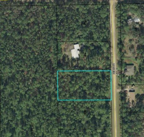 1088 Peach St, Bunnell, FL 32110 (MLS #246629) :: RE/MAX Select Professionals