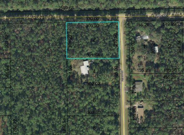 5193 Canal Avenue, Bunnell, FL 32110 (MLS #246631) :: RE/MAX Select Professionals