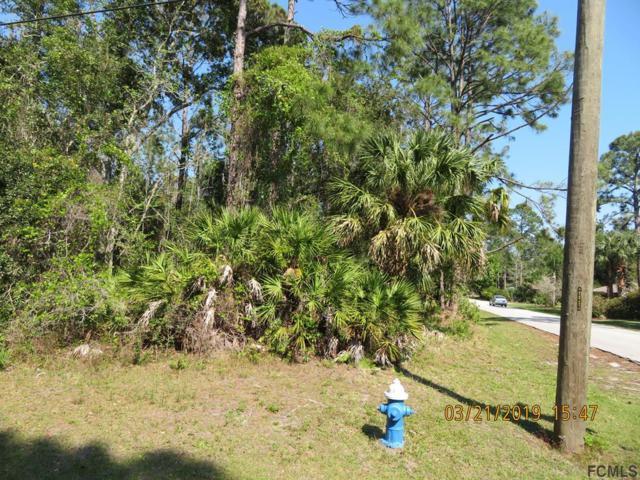 131 Point Pleasant Drive, Palm Coast, FL 32164 (MLS #246634) :: RE/MAX Select Professionals