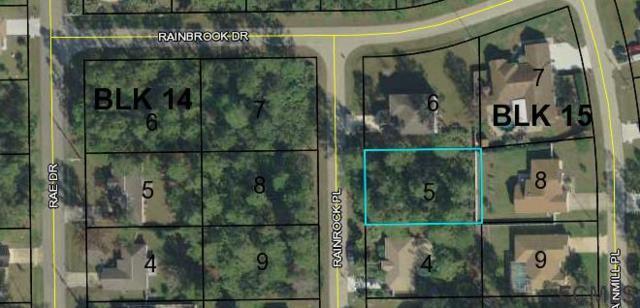 3 Rainrock Place, Palm Coast, FL 32164 (MLS #246663) :: RE/MAX Select Professionals