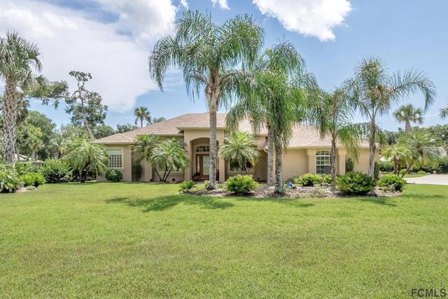 3963 S Chinook Lane, Ormond Beach, FL 32174 (MLS #247209) :: Noah Bailey Real Estate Group