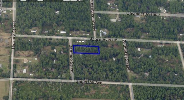 2829 Bamboo St, Bunnell, FL 32110 (MLS #247926) :: Memory Hopkins Real Estate
