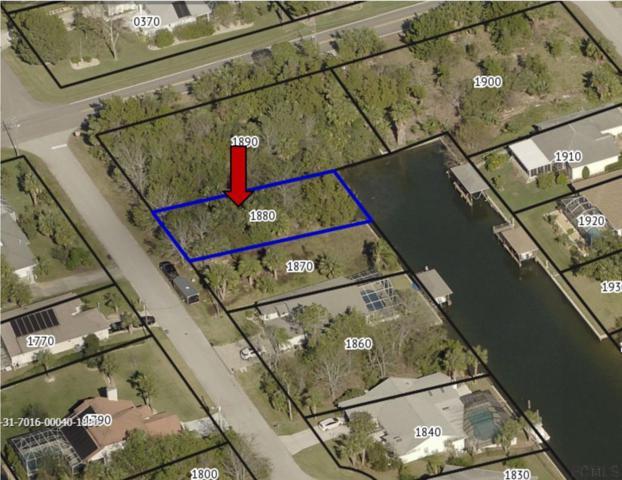 5 Colonia Ct, Palm Coast, FL 32137 (MLS #248237) :: Noah Bailey Real Estate Group