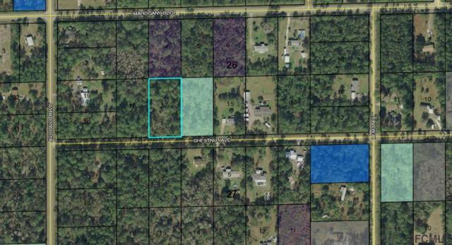 5858 Chestnut Ave, Bunnell, FL 32110 (MLS #248422) :: RE/MAX Select Professionals