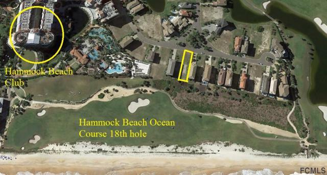 342 Ocean Crest Drive, Palm Coast, FL 32137 (MLS #248429) :: RE/MAX Select Professionals