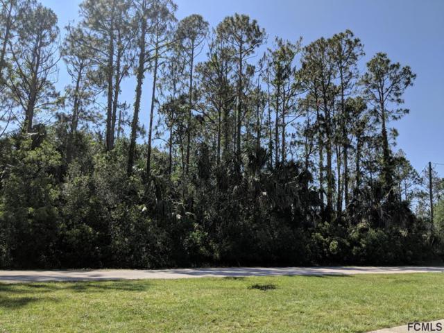 40 Serbian Bellflower Trail, Palm Coast, FL 32164 (MLS #248828) :: Noah Bailey Real Estate Group