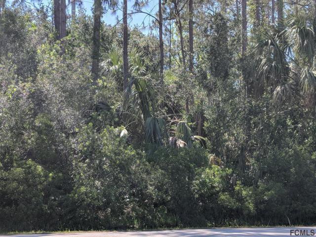 Palm Coast, FL 32164 :: Noah Bailey Real Estate Group