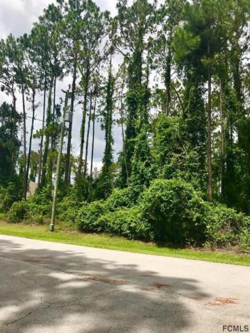 53 Eagle Harbor Trail, Palm Coast, FL 32164 (MLS #248955) :: Noah Bailey Real Estate Group