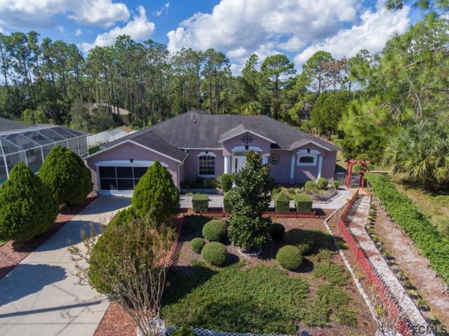 49 Presidential Lane, Palm Coast, FL 32164 (MLS #248973) :: Noah Bailey Real Estate Group