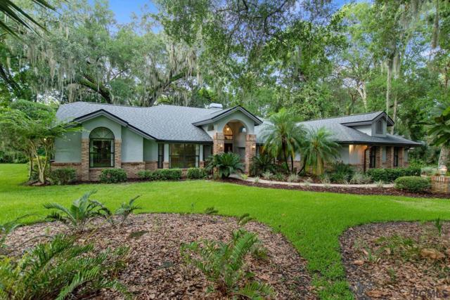 3902 Tano Drive, Ormond Beach, FL 32174 (MLS #249010) :: Noah Bailey Real Estate Group