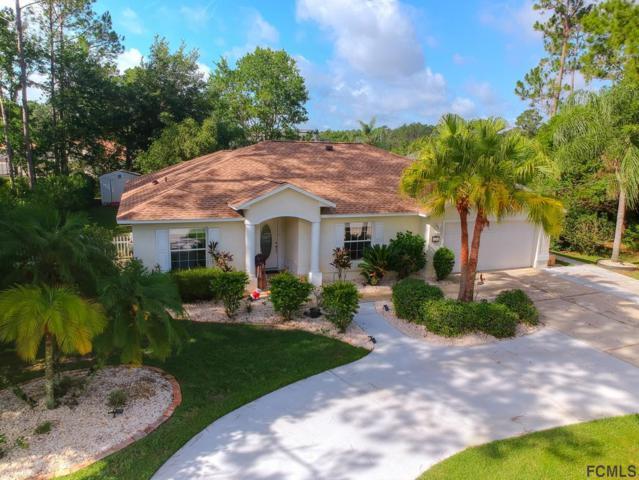 19 Eric Drive, Palm Coast, FL 32164 (MLS #249011) :: Noah Bailey Real Estate Group