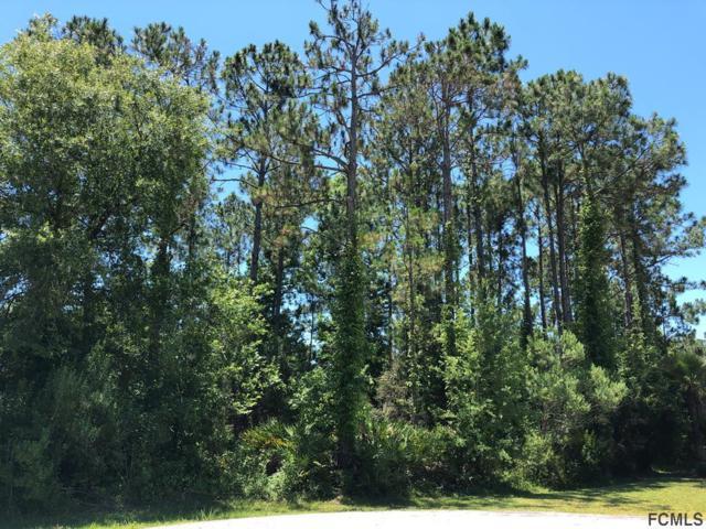 31 Bunker Lane, Palm Coast, FL 32137 (MLS #249048) :: Noah Bailey Real Estate Group
