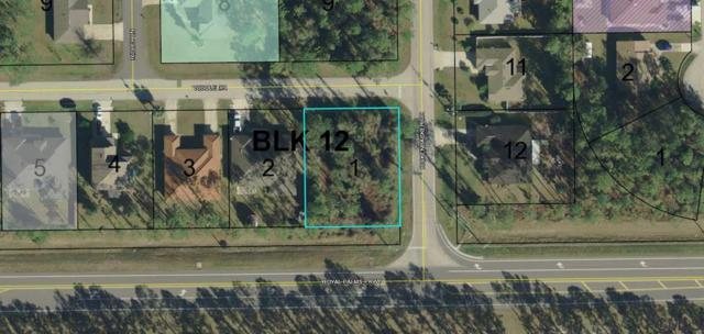 54 Riddle Dr, Palm Coast, FL 32164 (MLS #249052) :: Memory Hopkins Real Estate