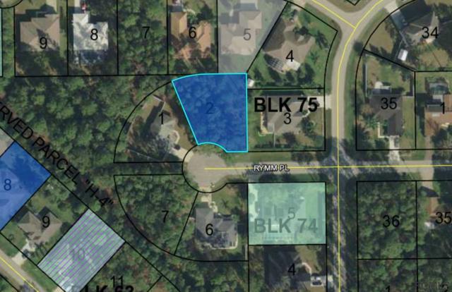 4 Rymm Place, Palm Coast, FL 32164 (MLS #249091) :: Memory Hopkins Real Estate