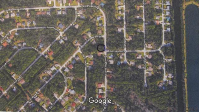 132 Point Pleasant Drive, Palm Coast, FL 32164 (MLS #249319) :: Memory Hopkins Real Estate