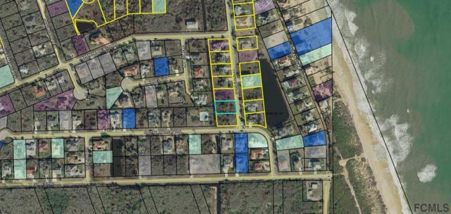 22 Mahoe Dr S, Palm Coast, FL 32137 (MLS #249677) :: Memory Hopkins Real Estate