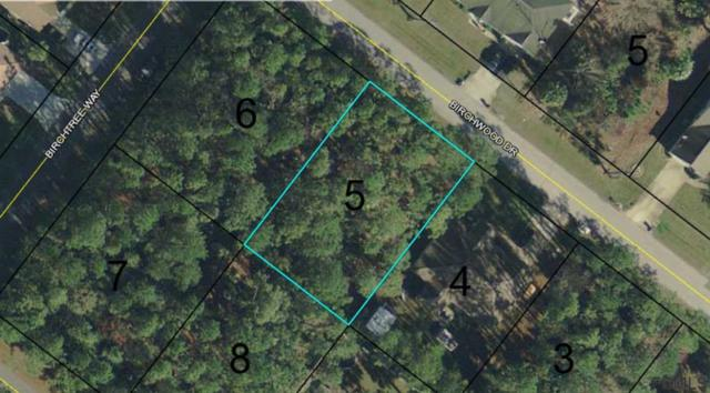 8 Birchwood Dr, Palm Coast, FL 32137 (MLS #249852) :: Memory Hopkins Real Estate
