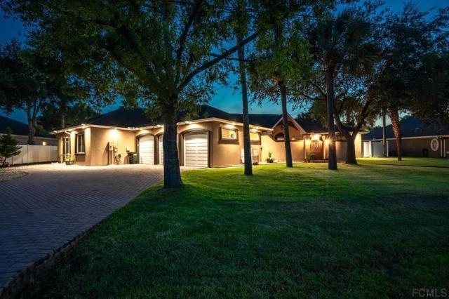 141 London Dr, Palm Coast, FL 32137 (MLS #249856) :: Memory Hopkins Real Estate