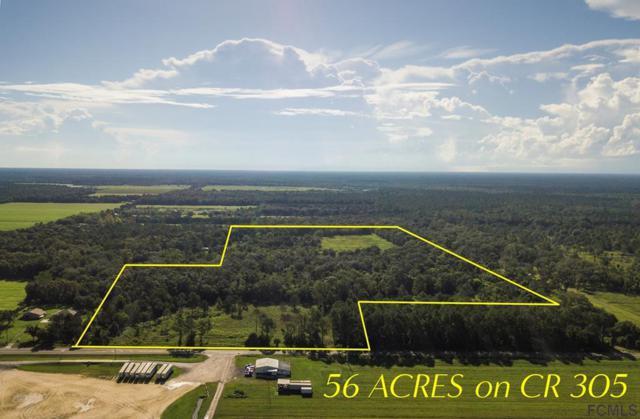 3305 Cr 305, Bunnell, FL 32110 (MLS #250431) :: Keller Williams Realty Atlantic Partners St. Augustine