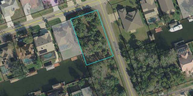 96 Cimmaron Dr, Palm Coast, FL 32137 (MLS #253420) :: Memory Hopkins Real Estate