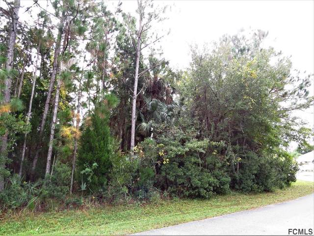 44 Luther Dr, Palm Coast, FL 32137 (MLS #253475) :: Noah Bailey Group