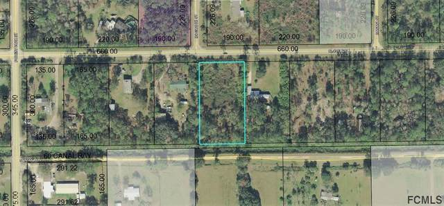 3819 Clove Avenue, Bunnell, FL 32110 (MLS #255008) :: The DJ & Lindsey Team