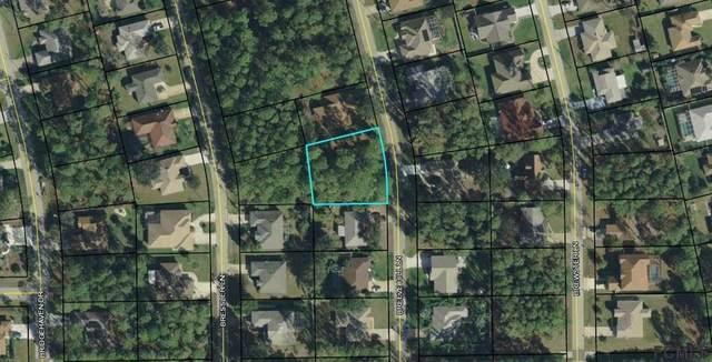 59 Breeze Hill Lane, Palm Coast, FL 32137 (MLS #255094) :: Memory Hopkins Real Estate