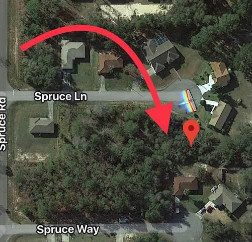 14 Spruce Lane, Ocala, FL 34472 (MLS #255142) :: The DJ & Lindsey Team