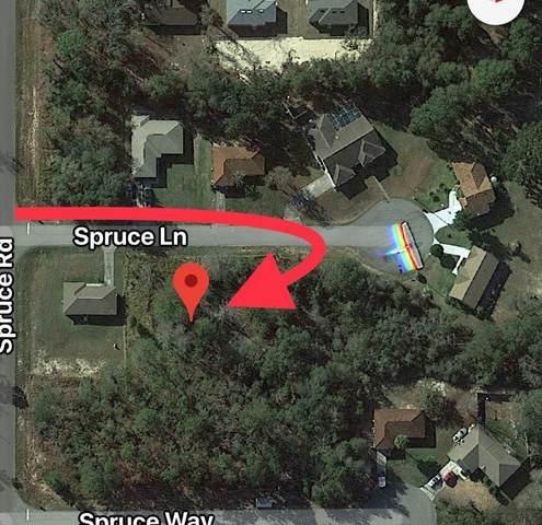 16 Spruce Lane, Ocala, FL 34472 (MLS #255143) :: The DJ & Lindsey Team