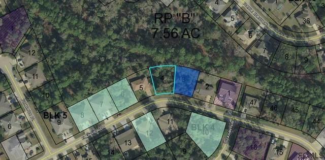 152 Plain View Drive, Palm Coast, FL 32164 (MLS #255192) :: Noah Bailey Group