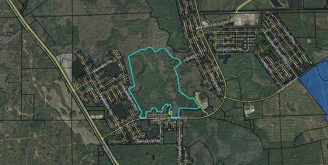 11 Kainite Court, Palm Coast, FL 32164 (MLS #257343) :: Memory Hopkins Real Estate