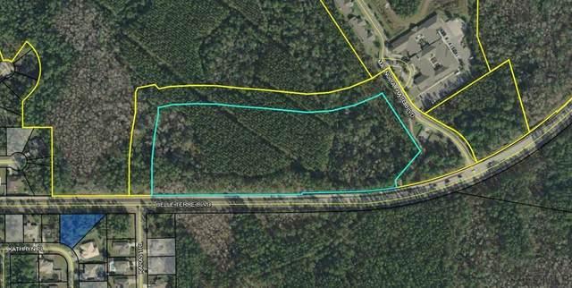 300 Magnolia Trace Blvd, Palm Coast, FL 32164 (MLS #257358) :: Memory Hopkins Real Estate