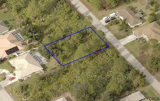 12 Pickwood Place, Palm Coast, FL 32164 (MLS #257650) :: Noah Bailey Group