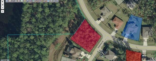 101 Reidsville Drive, Palm Coast, FL 32164 (MLS #257659) :: Noah Bailey Group