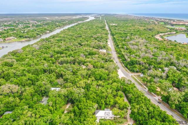 10 N Hammock Preserve Ln, Palm Coast, FL 32137 (MLS #258014) :: The DJ & Lindsey Team