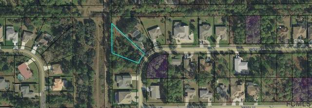 54 Fenimore Lane, Palm Coast, FL 32137 (MLS #258379) :: Memory Hopkins Real Estate
