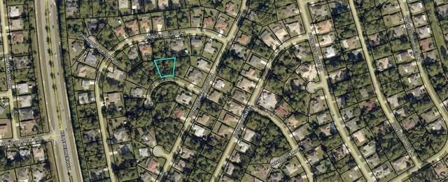 6 Princess Ellen Pl, Palm Coast, FL 32164 (MLS #258619) :: Memory Hopkins Real Estate