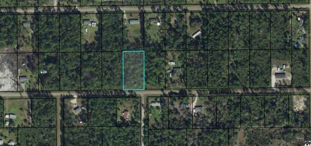 5732 Palm Ave, Bunnell, FL 32110 (MLS #259264) :: Memory Hopkins Real Estate