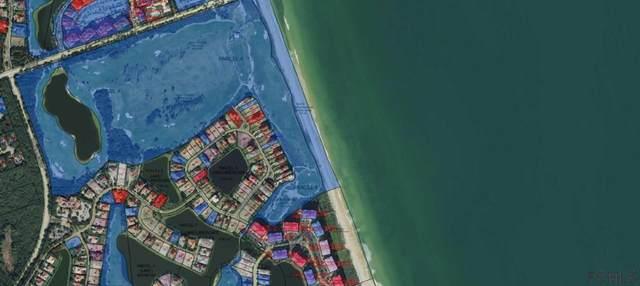 54 Hammock Beach Cir S, Palm Coast, FL 32137 (MLS #259879) :: RE/MAX Select Professionals