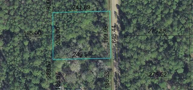 1666 Beech Blvd, Bunnell, FL 32110 (MLS #259880) :: Memory Hopkins Real Estate