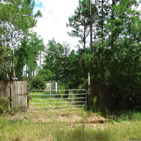 2953 Royal Palm Dr, Bunnell, FL 32110 (MLS #259885) :: Memory Hopkins Real Estate