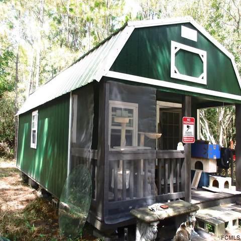 5502 Buckeye Lane, Bunnell, FL 32110 (MLS #259891) :: Memory Hopkins Real Estate